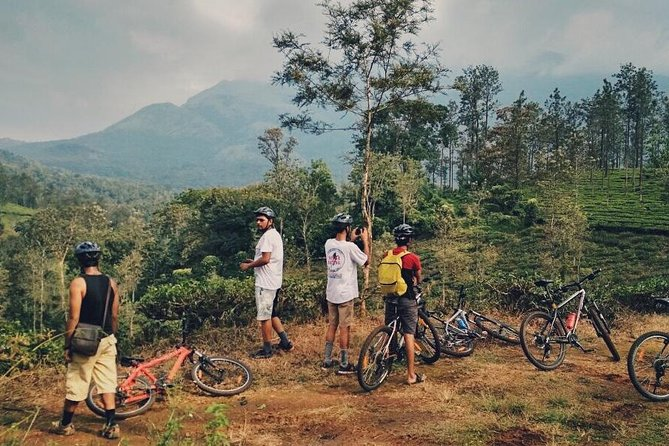 Cycle Through the Lush Mountains, Wayanad