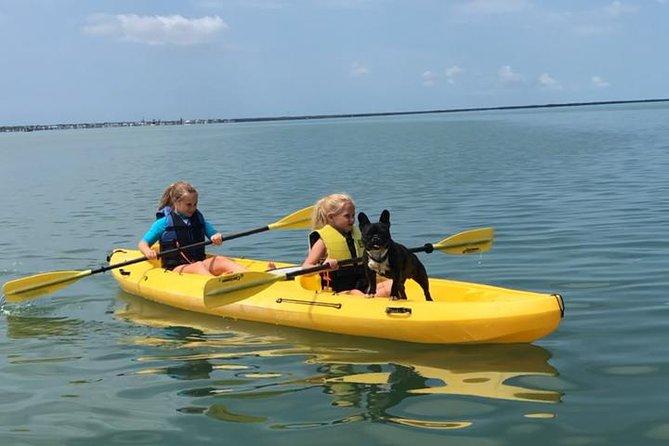 Kayak and Paddleboard Rentals Key Largo