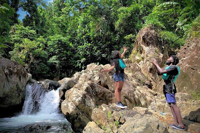 Bio Bay & El Yunque Rainforest Combo Tour
