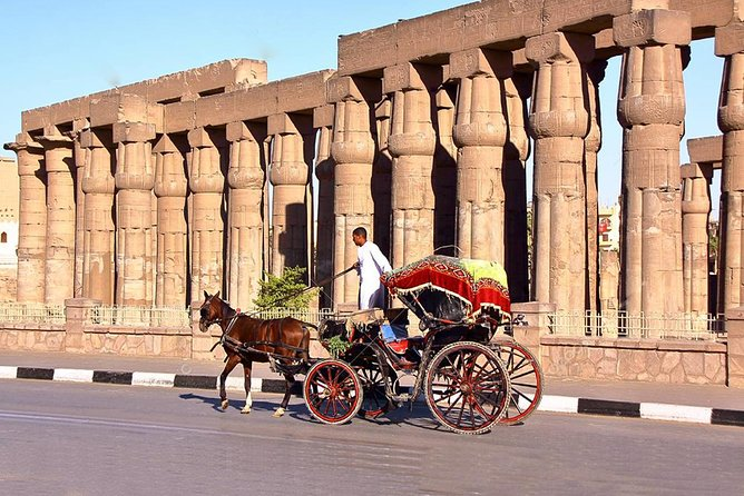 3-Hour Private Luxor Horse Carriage City Tour