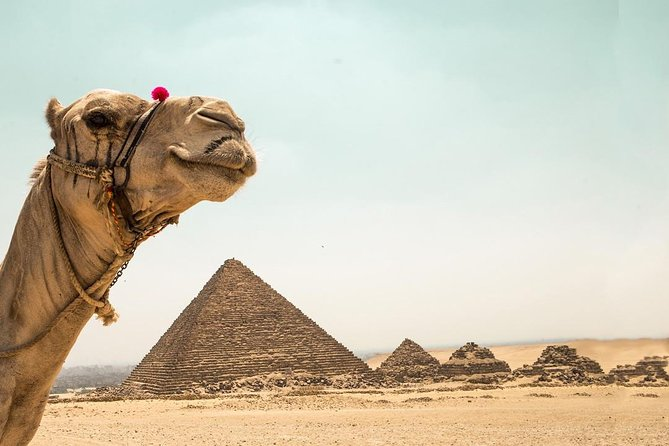 Best customizable Tour from Cairo airport