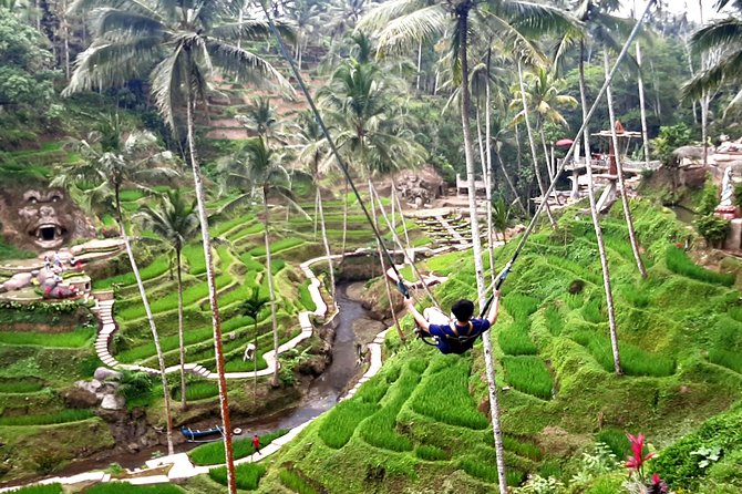 Bali Ubud Tour with Rice Terrace Swing