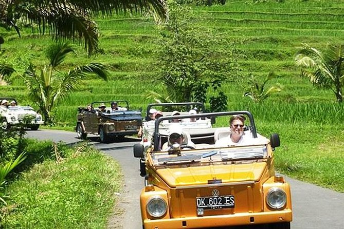 Ubud Volkswagen Full Day Tour