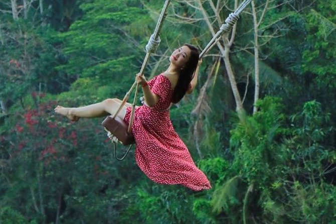 Private Bali Tour: Ubud Jungle Swing, Culture and Nature