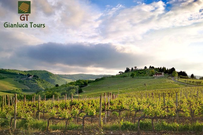 WINE TOURS CHIANTI full day photo 3
