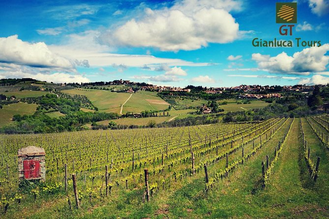 WINE TOURS CHIANTI full day photo 2