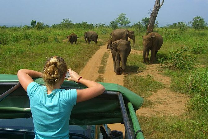 Day tour to Udawalawe from Colombo