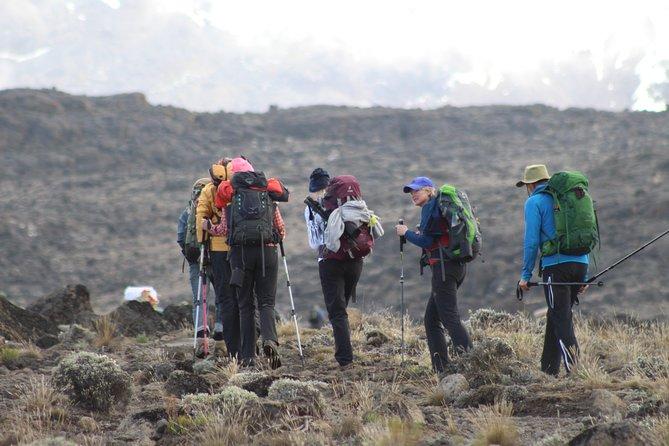 Kilimanjaro Rongai Route 7 Days