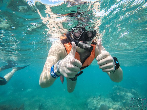Snorkel in Puerto Morelos, open bar & transportation included