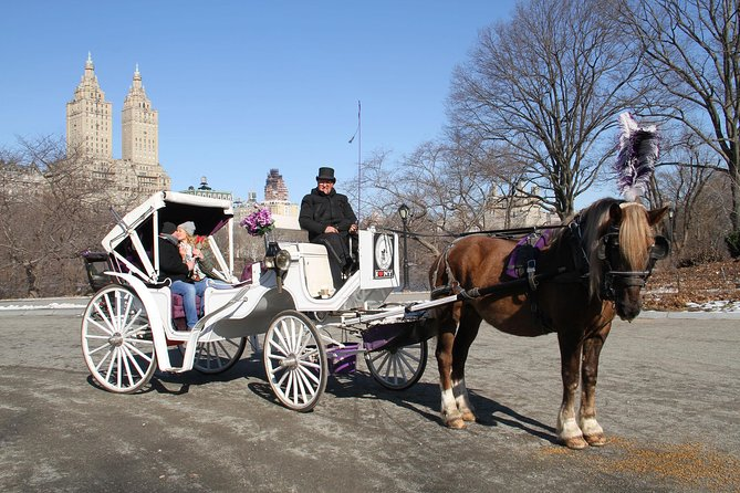 Central Park Horse Carriage Ride - VIP Tour with photo stops (55 min)