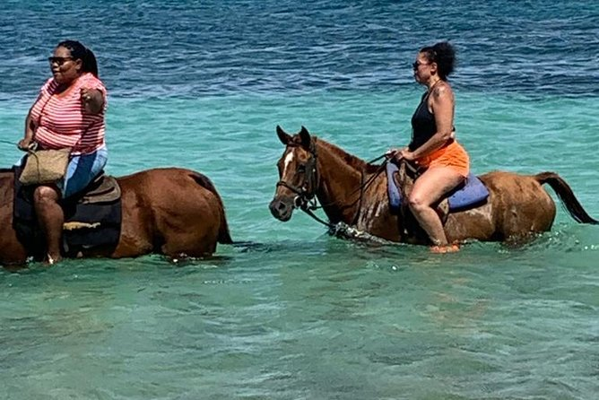 Hour Horseback Riding Guided Tour from Runaway Bay