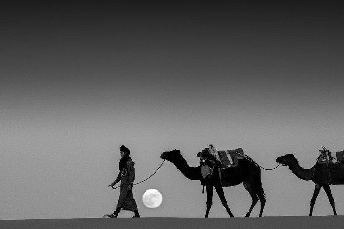 Shared 3 days tour From Marrakesh to Fes via Merzouga desert
