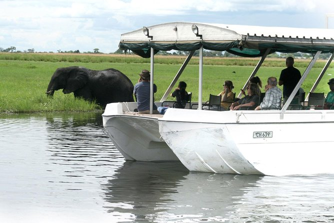 Sunset Cruise on Chobe River with Hotel Pickup from Kasane