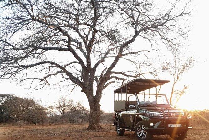 Full Day Kruger National Park
