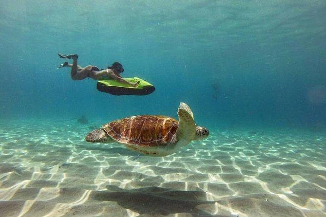 Seabob Snorkelling Experience (30mins)