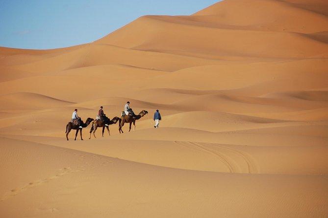 Fes Desert Tours 3 Days to Marrakech