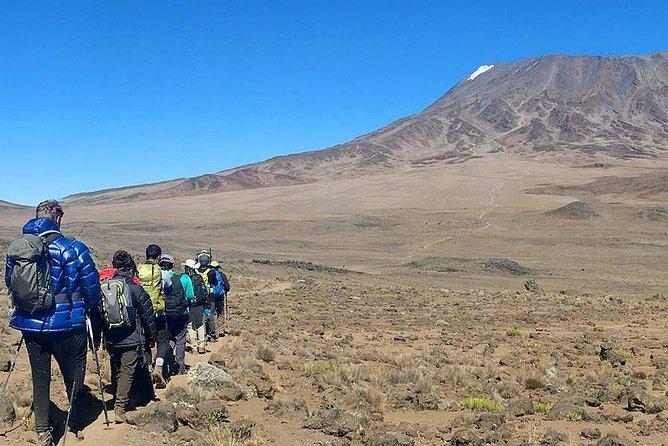 Kilimanjaro Umbwe Climb 6-days/5-nights 98% Success Rate!!