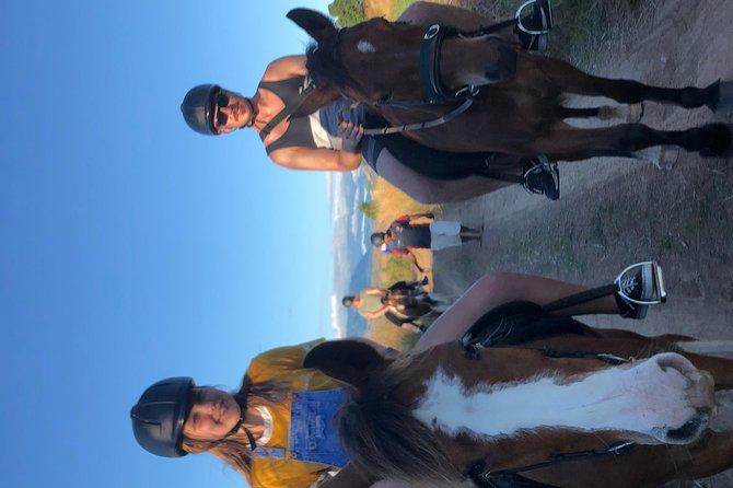 Horse Riding in Fiji