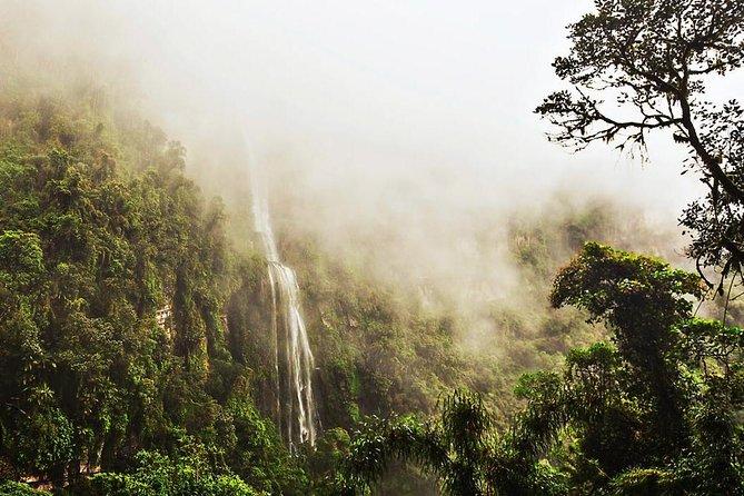 La Chorrera waterfall & Paramo from Bogota Private Tour FLEXIBLE SCHEDULE