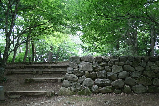 Castle Ruins and Nature Walk (Private Tour - Price per Group)