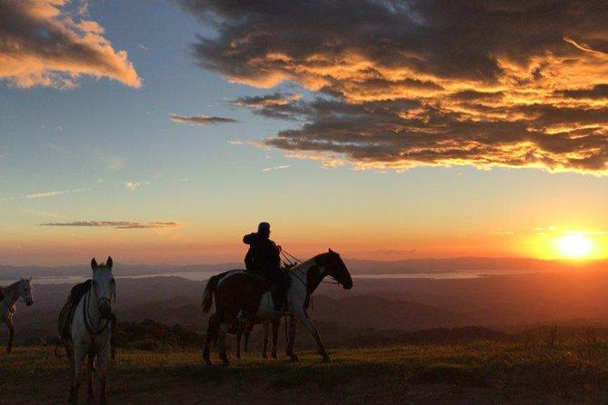 Monteverde Cloud Forest Horseback Riding