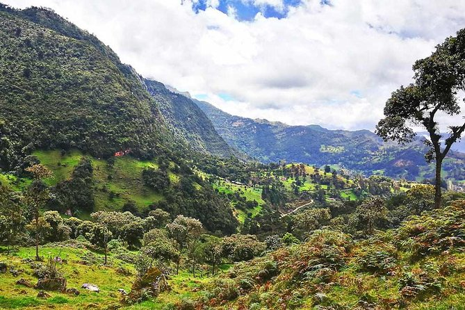 La Chorrera waterfall & Paramo from Bogota Private Tour ALL INCLUDED