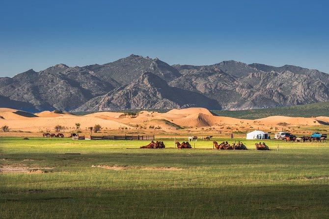 Gobi Desert & Central Mongolia