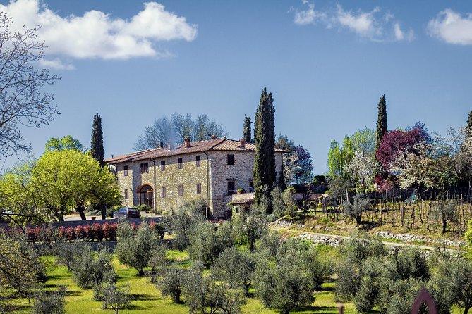 Private Transfer: Ciampino Airport (CIA) to Castellina in Chianti or vice versa