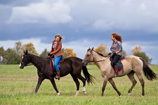 Horse-riding in the Rhodopes