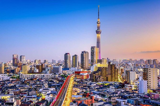 Tokyo Private Tour by Car / Van - Guide Option Available