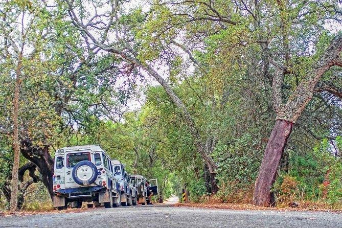 Super Day- Jeep Tour + Arade River Cruise