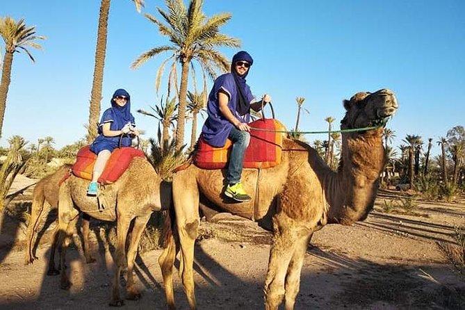 Overnight Desert Trip Form Fez To Fez