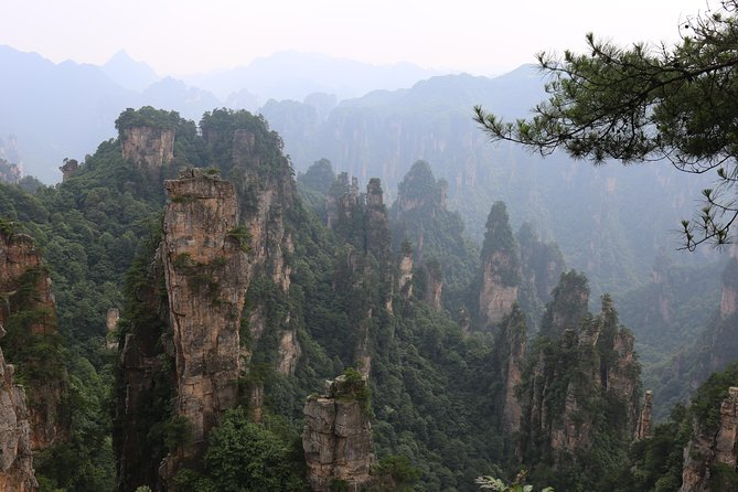 Zhangjiajie Park Avatar Mountain & Zhangjiajie Glass Bridge Day Tour