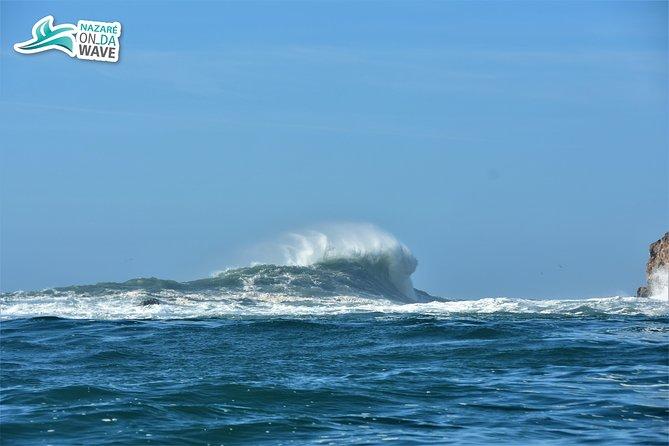 Big wave watching