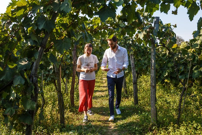 WINE & DINE Tour from Kutaisi