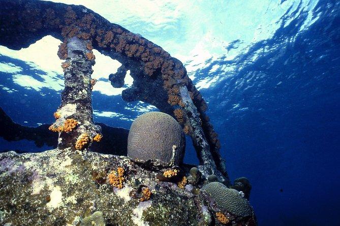 Discover Scuba Diving