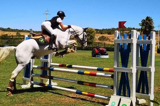 Horse Riding near the ocean, jumping and dressage lessons photo 1