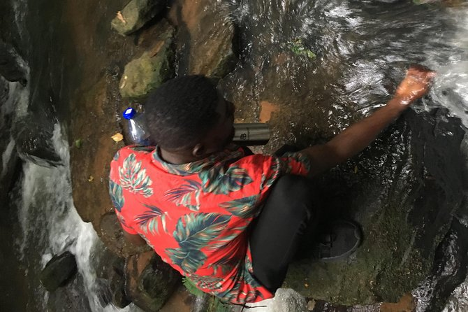Accra To Boti Falls, Aburi Botanical Gardens Tours photo 4
