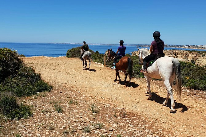 Horse Riding near the ocean, jumping and dressage lessons photo 6