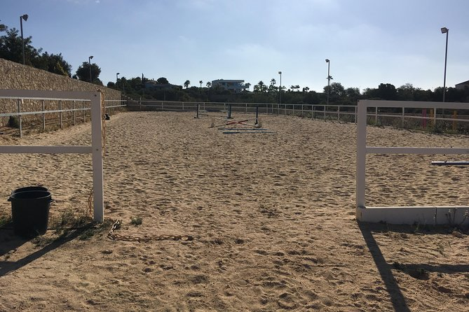 Horse Riding near the ocean, jumping and dressage lessons photo 9