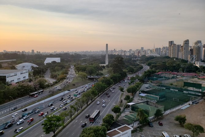 Private Half-Day Guided Tour to São Paulo