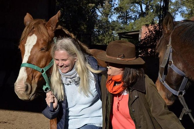 Coaching With Horses in Buenos Aires, Argentina