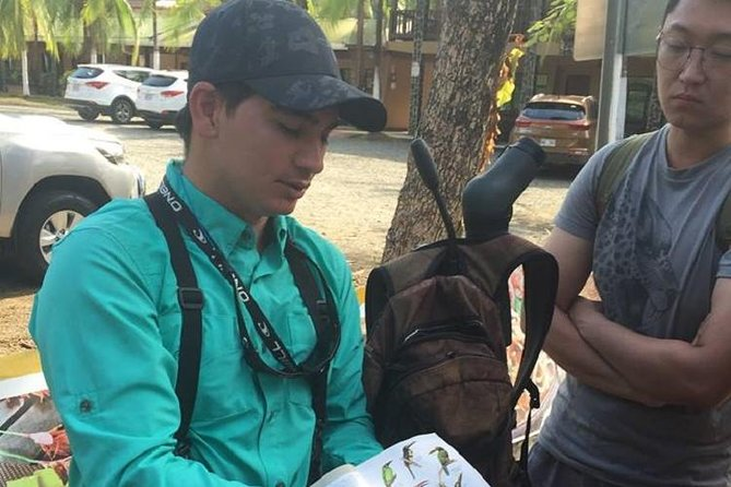 Birdwatching Tour Manuel Antonio /Esquipulas Group Tour Experience