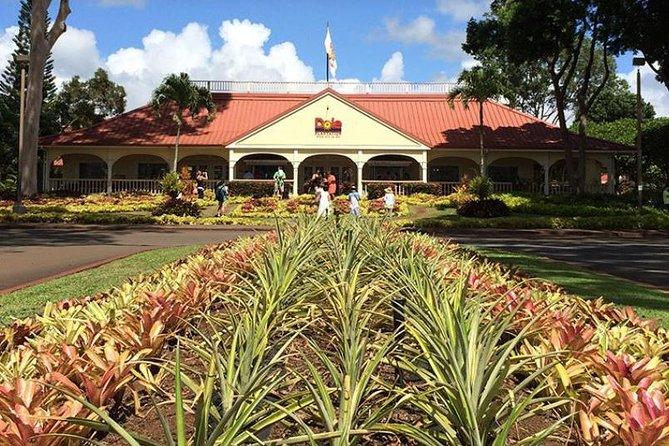 Oahu Grand Circle Tour with Kualoa Ranch Lunch