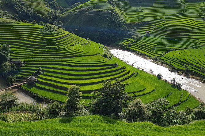 Rice Terraces and Ethnic Minorities in North Vietnam