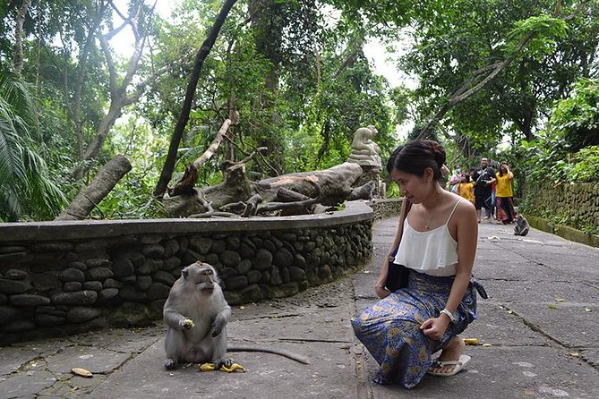 Full day Bali Car Charter With English Speaking Driver