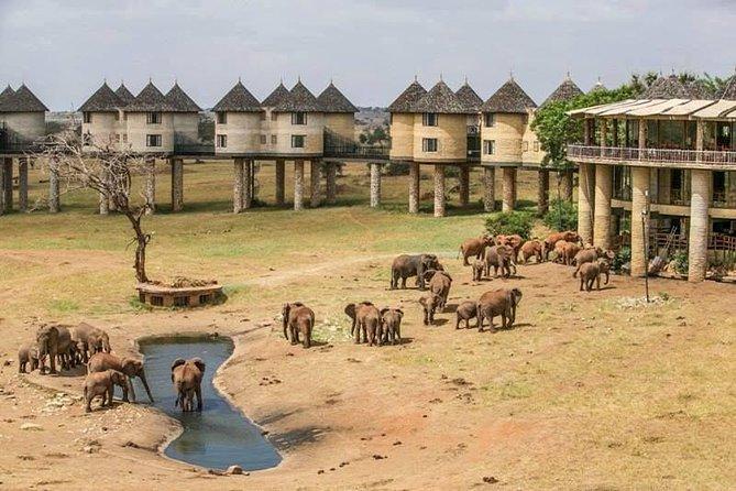 4 Days Tsavo East National Park, Amboseli & Taita Hills Wildlife Sanctuary