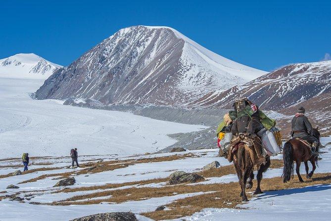 Horse trail to Altai Mountains