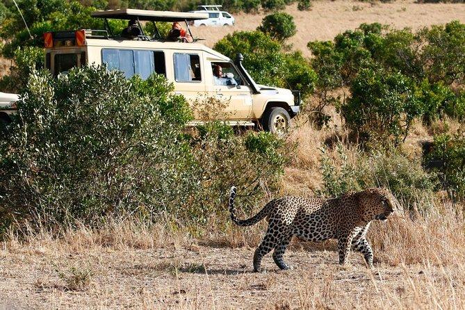 4 Days 3 Nights Aberdare, Lake Nakuru, and Lake Naivasha Safari from Nairobi