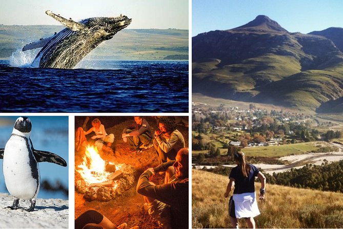 2 Days, 1 Night - Exploring local gems of the Overberg Region & 4* Accommodation
